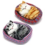 Coolayoung 2Pcs Sleeping Cat in Pet Pad Doll Toy, Mini Kitten in Pet Pad with Meows Sounds Decor for Office Desk Hand Toy Gift for Kids Boys Girls