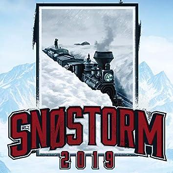 Snøstorm (2019)