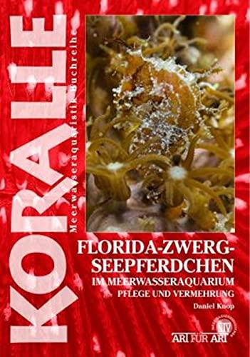Florida-Zwergseepferdchen im Meerwasseraquarium: Pflege und Vermehrung (Koralle)