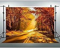 新しいJSCTWCL10x7ftの森の小道の背景ビデオフォトスタジオの小道具の秋の風景の背景自然の風景の壁紙395