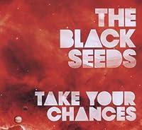 Take Your Chances - Radio Version