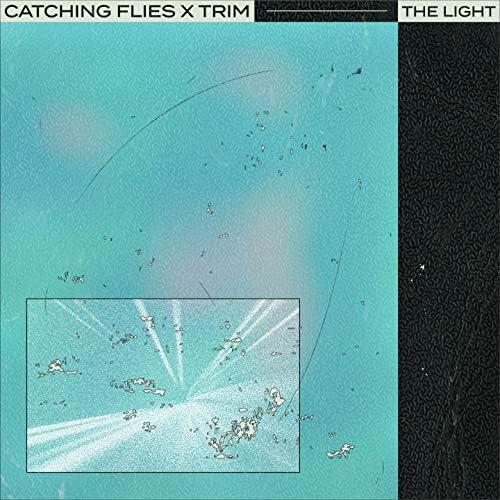 Catching Flies & Trim