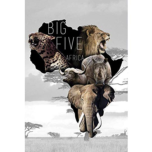 wtnhz Five African Elephant Leopard Lion Rhino Nordic Pop Art Abstract Home Decoration Frameless