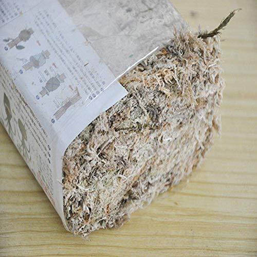 HTYG 6L Sphagnum Moos Feuchtigkeitsspendende-Torf Ernährung Organische Dünger-für Orchidee Phalaenopsis Tropischen Pflanzen und Terrarien Garten Liefert