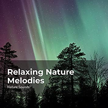 Relaxing Nature Melodies