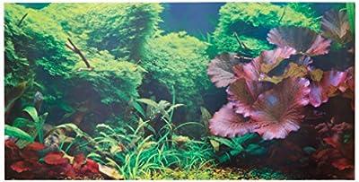 Aquatic Creations Static Cling Aquarium Background, 36 by 18-Inch, Tropical
