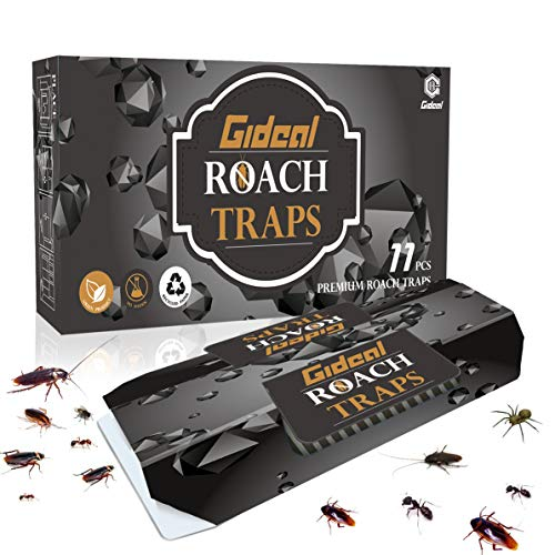 Gideal Roach Killer And Traps with Bait