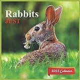 Just Rabbits Calendar 2022: official Rabbits calendar 2022,12 months, bunny Calendar 2022 , Square Calendar