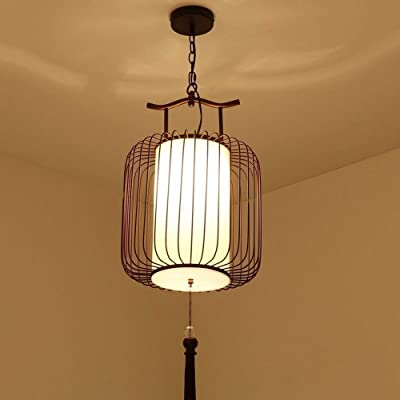 DPT5LIKING Lámpara De Jaula De Pájaros De Hierro Forjado Moderna ...