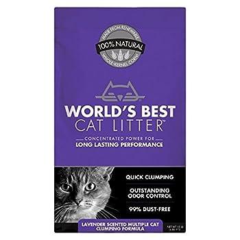 worlds best kitty litter