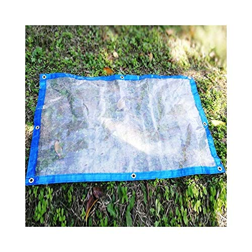 ALGFree Transparent Tarpaulin Light Transmission Rainproof Cloth Waterproof Sunscreen Outdoor Balcony Window Ground Sheet Covers, 22 Sizes (Color : Blue, Size : 2x5m)