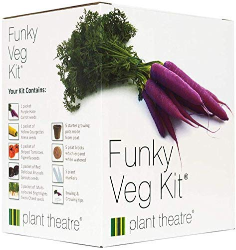 Funky Vegetable Kit