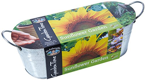 Mr Fothergill's 27231 Garden Time Sunflower Garden Windowsill Kit - Green