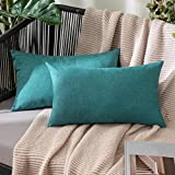 MIULEE 2 Pack Waterproof Outdoor Pillow Case made of 100% Soft Waterproof Polyester with Water Repellent Surface Decorative Garden Cushion Cover for Living Room Bedroom 30x50CM Duck Blue