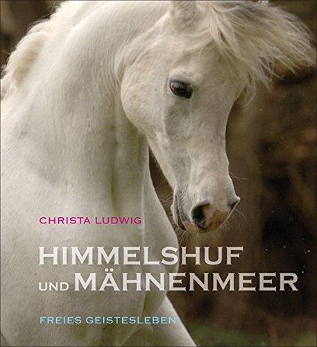 Himmelshuf und Mähnenmeer: Drei Pferde-Fotogeschichten.