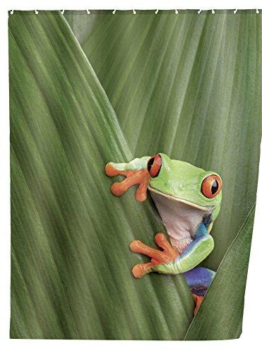 WENKO 20958100 Duschvorhang Frog - waschbar, mit 12 Duschvorhangringen, 100 prozent Polyester, Mehrfarbig