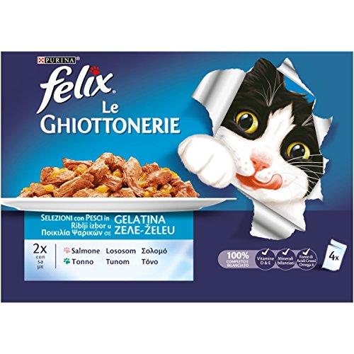 Purina Felix Le Ghiottonerie Hmido Chat avec Saumon et Thon 40 sachets de 100 g chacun, 10 Paquets de 4 x 100 g