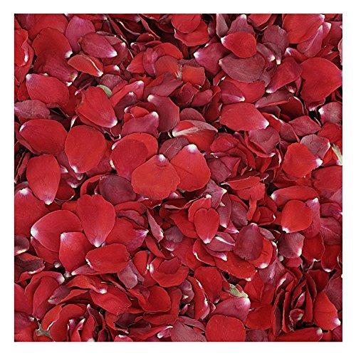 Valentine Red Rose Petals - 30 cups Rose Petals. Wedding Rose Petals from Flyboy Naturals