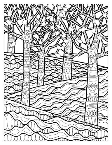 Creative Haven Into the Woods: A Coloring Book with a Hidden Picture Twist (Creative Haven Coloring Books)