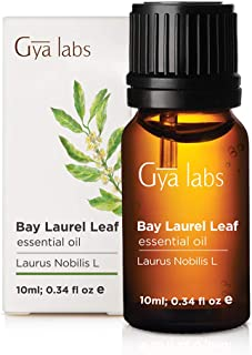 Bay Leaf (Laurel) Essential Oil for Hair (10ml) - 100% Pure Therapeutic Grade