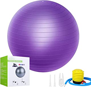 ISENPENK Exercise Ball 65CM, Anti-Burst and Slip Workout...