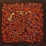Songtexte von Seachange - On Fire, with Love