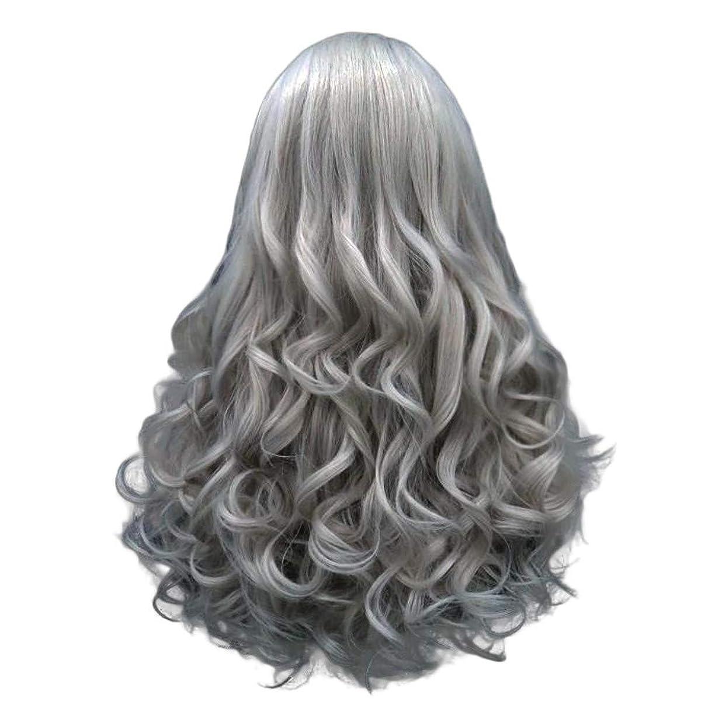 恐ろしい小康時折長い巻き毛の混合カラーセクシーなグラデーショングレーパーティーウィッグ