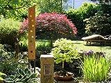 Gartenskulptur aus Holz und Glas. Gartendekoration als...