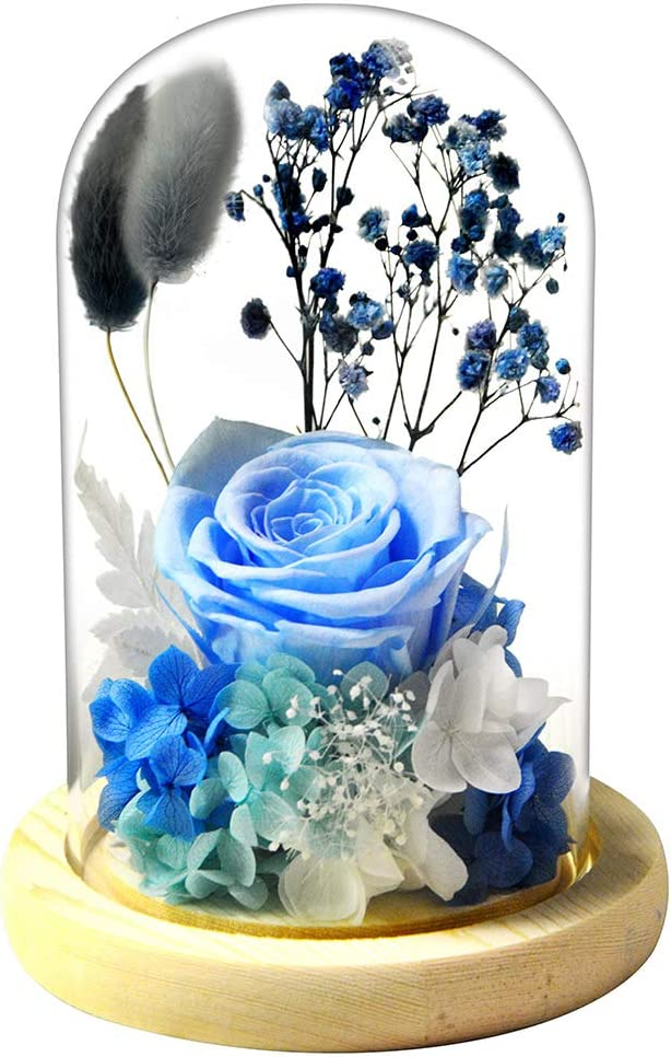 FLOVE Forever Rose Large-scale sale in Glass half Dome with Real Sky Preserved Fl Blue