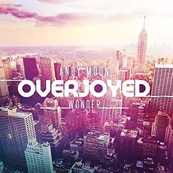 Overjoyed / Wonder