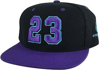Number  23 Black Aqua Purple Visor Hip Hop Snapback Hat Cap X Air Jordan  Grape 0c689381a691