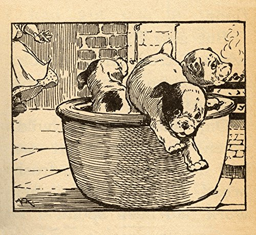 Three puppies play in a large cooking pot in the kicthen and now ther are trying to escape the matron Poster Print by AEK (24 x 36)