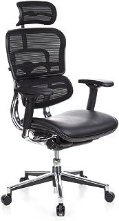 hjh OFFICE 652620 Silla de Oficina ERGOHUMAN Tejido de Malla y Cuero Negro, amplios ajustes, sólido Aluminio Pulido, ergonómico