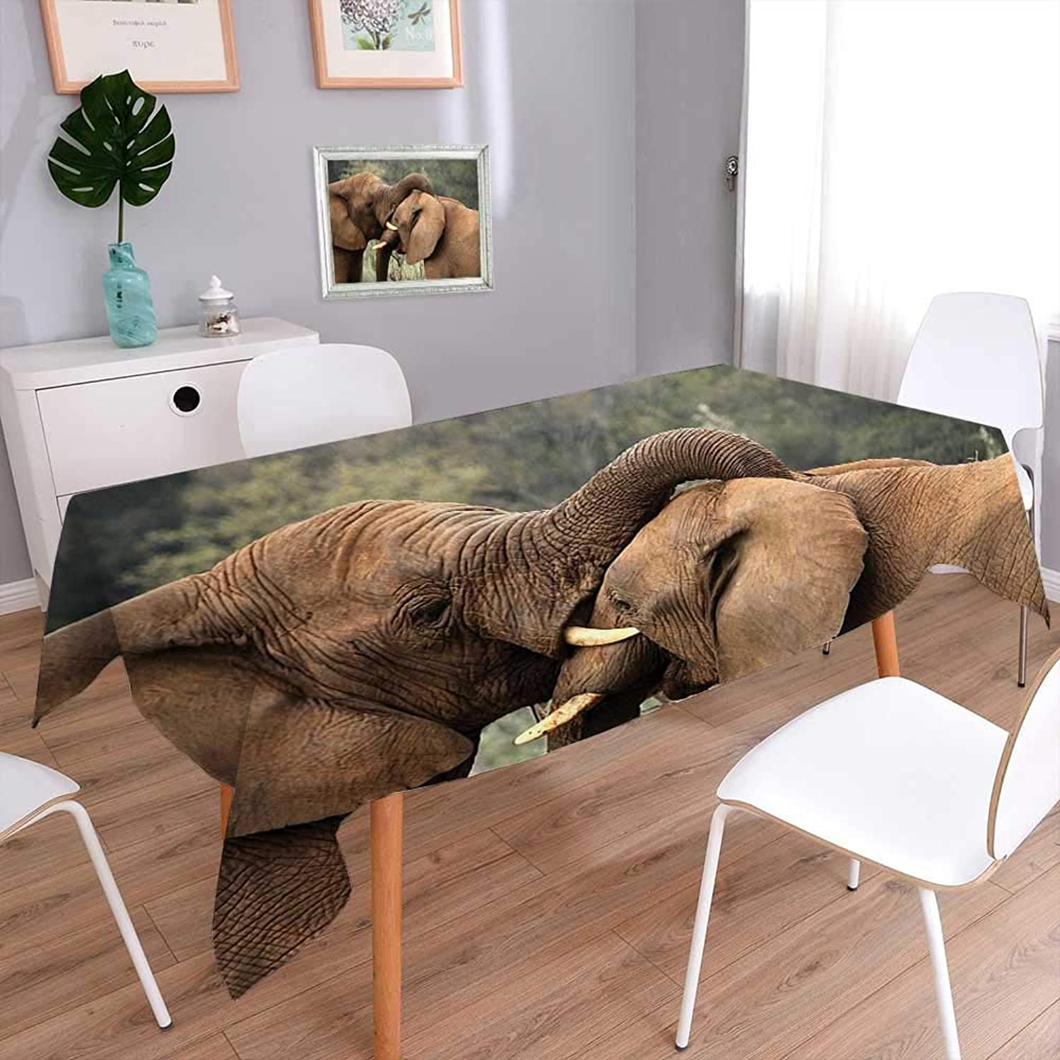 LQN 100% Polyester, EcoFriendly and Safe Two Wild Savanna Elephants Wrestling Cute Nature Icons South African Animals Game Photo Multi colors & Sizes 60 x140