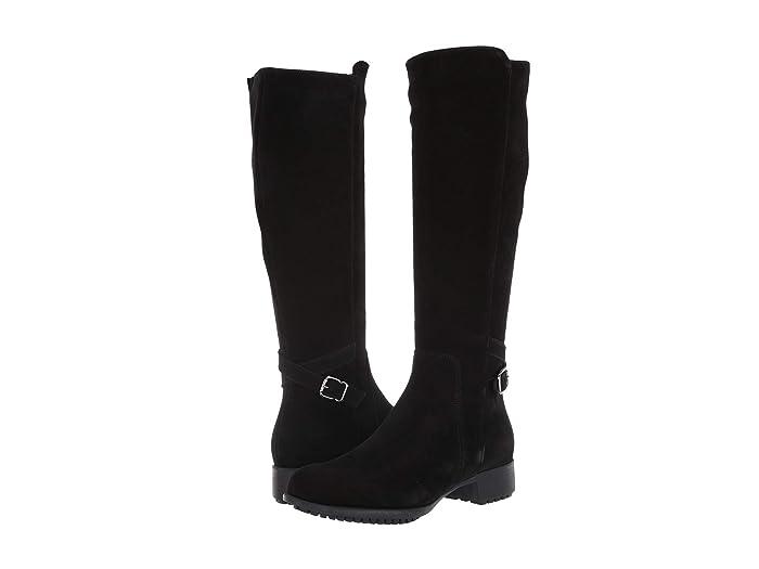 La Canadienne  Stella (Black Suede) Womens Dress Zip Boots