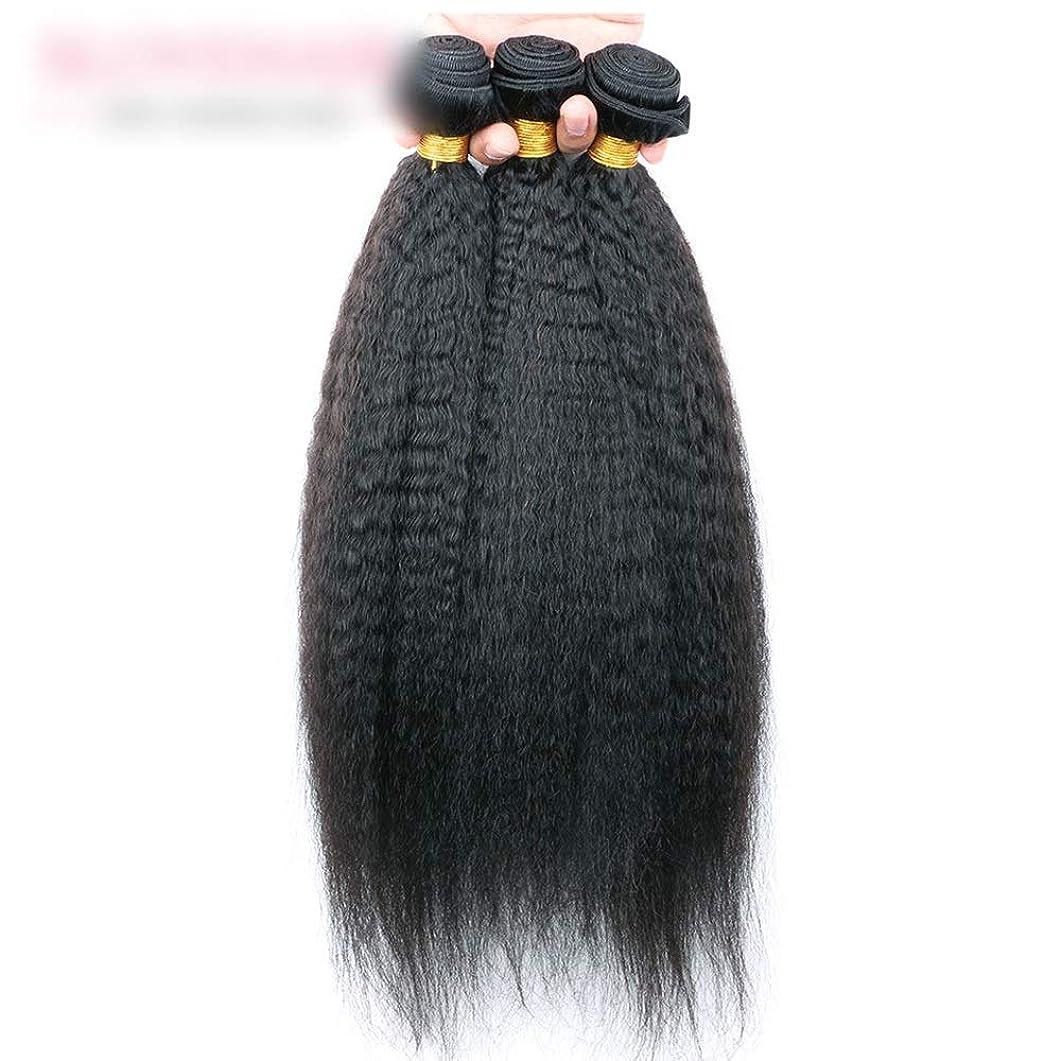 ペネロペセンター一月Yrattary その他のストレート人間の髪の毛ストレート髪の織り方未処理の人間の髪の毛の拡張子織り方自然な黒い色複合毛レースかつらロールプレイングかつら (色 : 黒, サイズ : 26 inch)