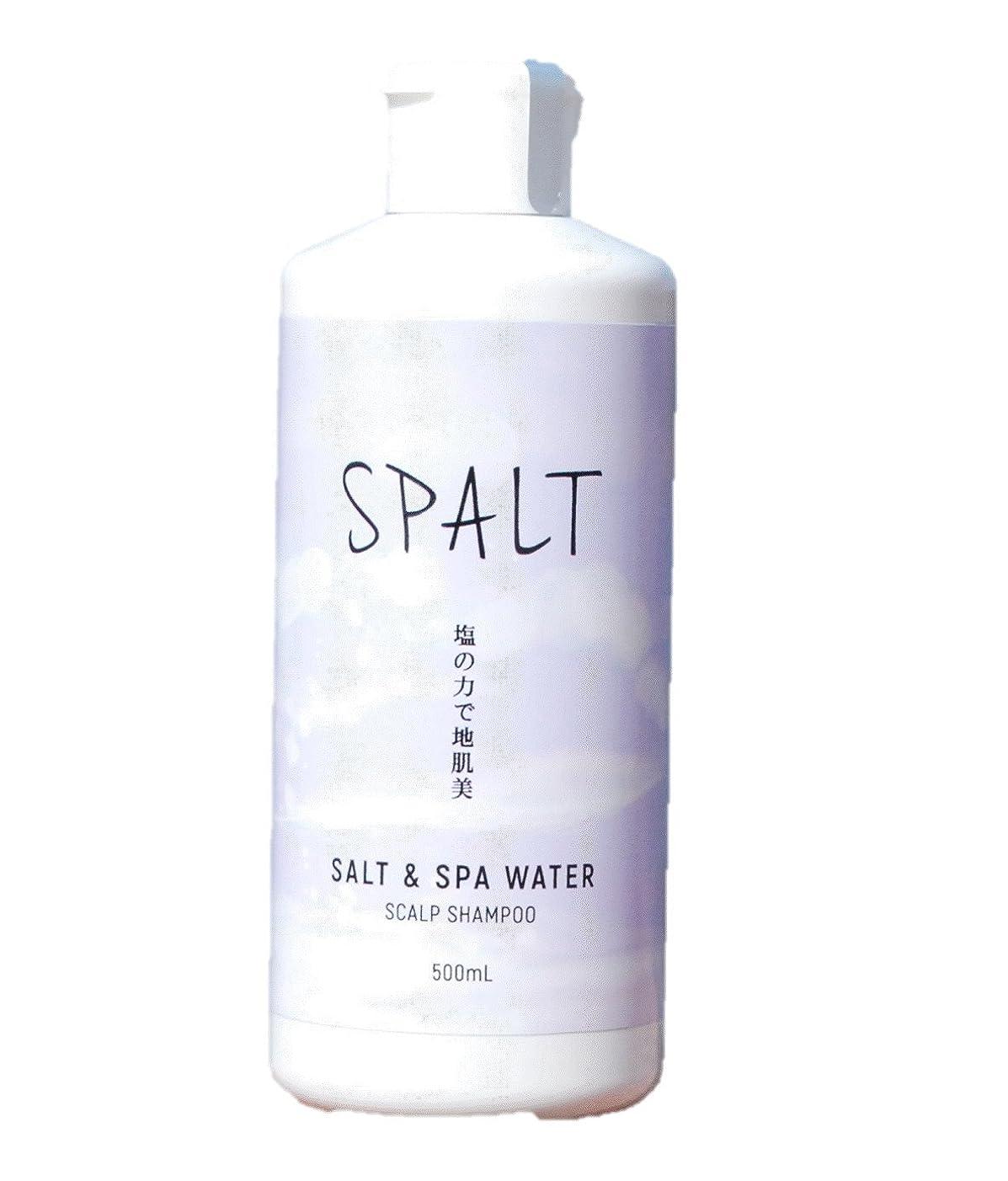 チャレンジ複雑な仲人塩シャンプー 皆生温泉水シャンプー スパルト