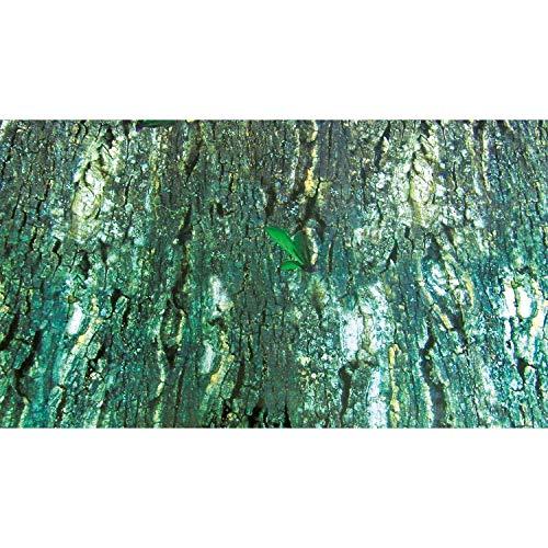 Trixie Terrarium Rückwand doppelseitig mit Tropic/bark Motiv, 150x 60cm, 4Stück - 2