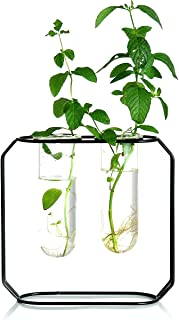Ivolador Modern Metal Frame Test Tube Vase Planter Terrariums Decorations for Living Room (Black)