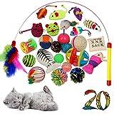 BLACK LION 20 Katzenspielzeug inklusive Katzenangel, Spielzeug für Katzen