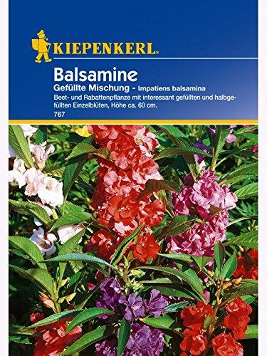Kiepenkerl Impatiens Balsamine Mix