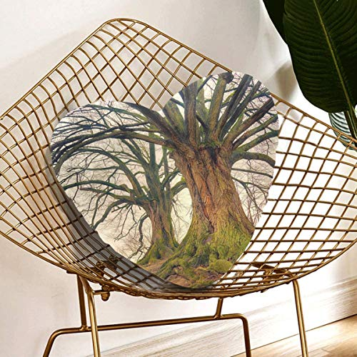 Rtosd Throw Pillows For Couch Tree Nature Wood Landscape Plant Kahl Log Tribe Throw Pillows For Couch 13.78 X 13.78 Inch Heart-shaped Cushion Gift For Friends/children/girl/valentine's Day