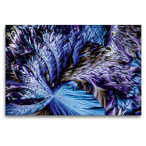 CALVENDO Premium Textil-Leinwand 120 x 80 cm Quer-Format Äpfelsäure mit Resorcin, Leinwanddruck von Thomas Becker