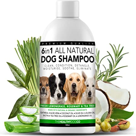 6 in 1 All Natural Dog Shampoo | Fresh Lemongrass, Rosemary & Tea Tree | 500ml | The Best Pet Wash to Groom, Clean, Condition, Detangle, Moisturise, Relieve Itching, Eliminate Germs, Deodorise
