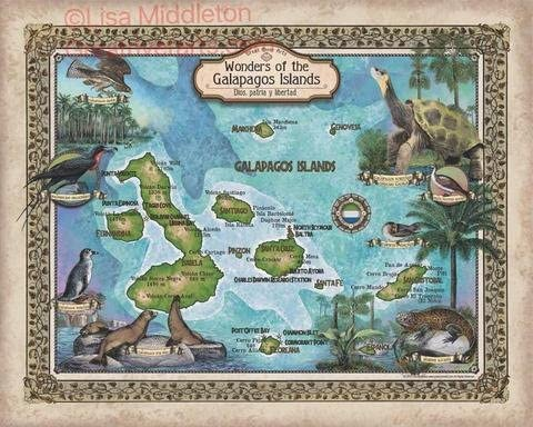 Great River Arts Galapagos Island Print Historic Poster Map Art At the price of Latest item surprise