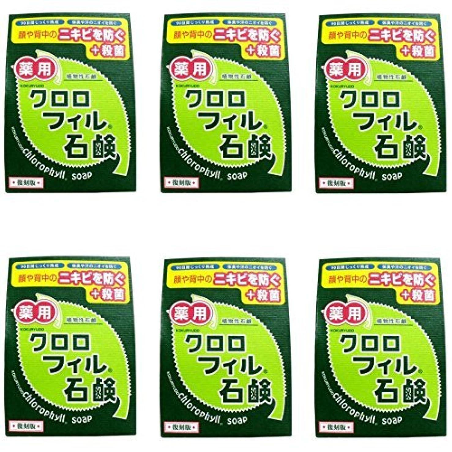 剥離魅惑的な死傷者【まとめ買い】クロロフィル石鹸 復刻版 85g (医薬部外品)【×6個】