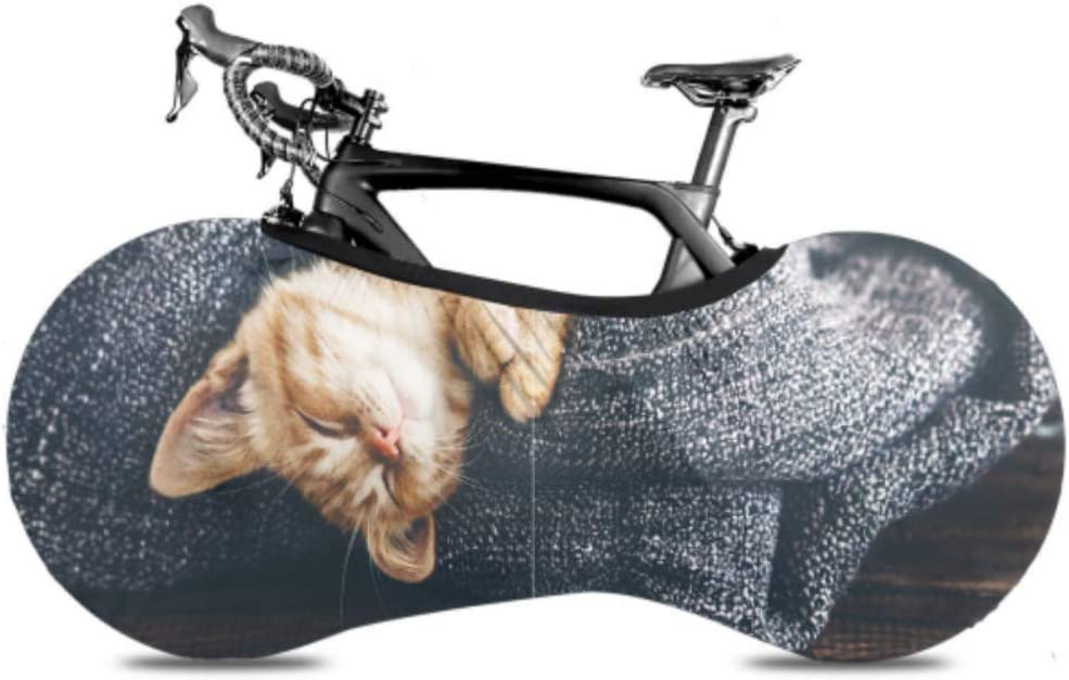 VvxXvx Cat is Sleeping in Soft Columbus Mall Covers Floor fo On Blanket Luxury Wooden