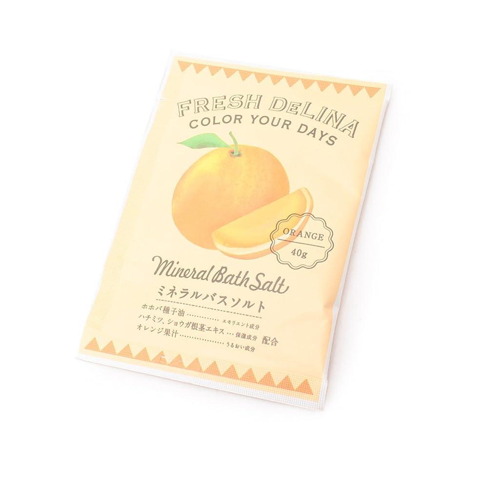 起訴する名門うなずくグローバルプロダクトプランニング フレッシュデリーナ ミネラルバスソルト オレンジ 40g E427974H