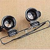 Zoom IMG-1 wei luong magnifier portatile 20x