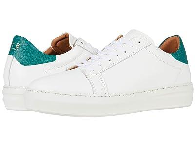 Shoe The Bear Aphex L
